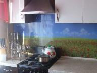 3 комнатная квартира, Слатино, Харьковская область (310605 4)