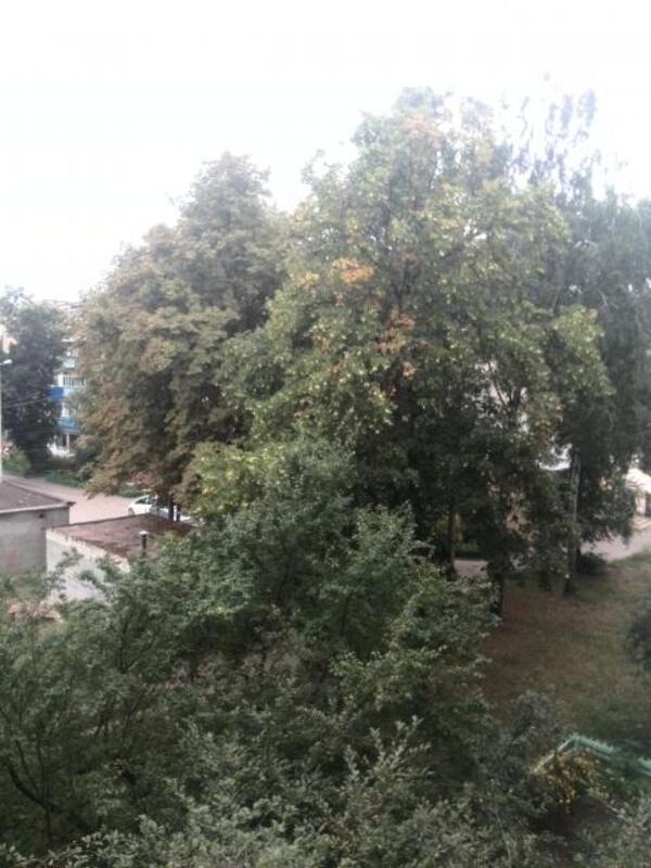 2 комнатная квартира, Харьков, Новые Дома, Маршала Рыбалко (353906 5)