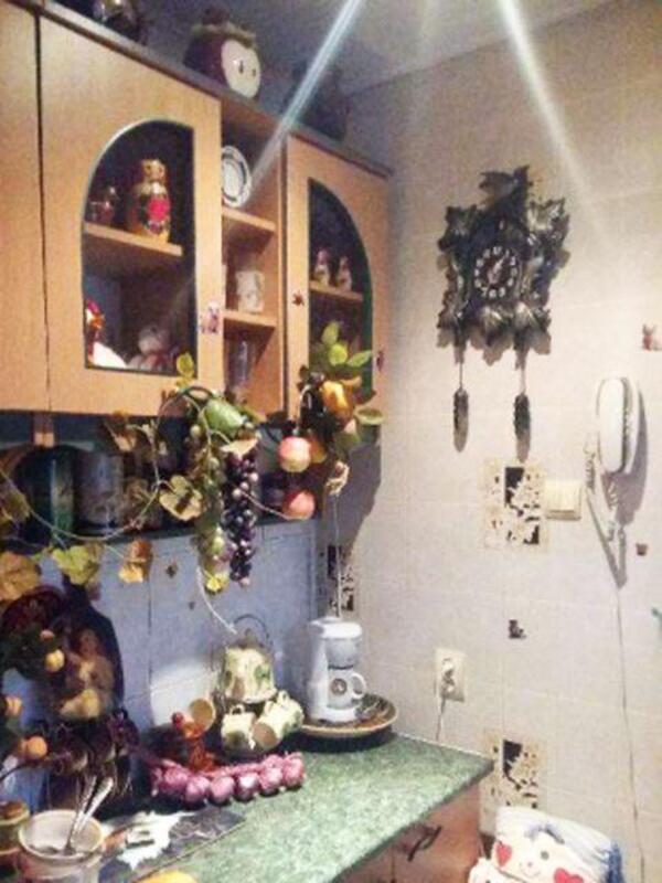 3 комнатная квартира, Харьков, ЦЕНТР, Дарвина (367635 4)