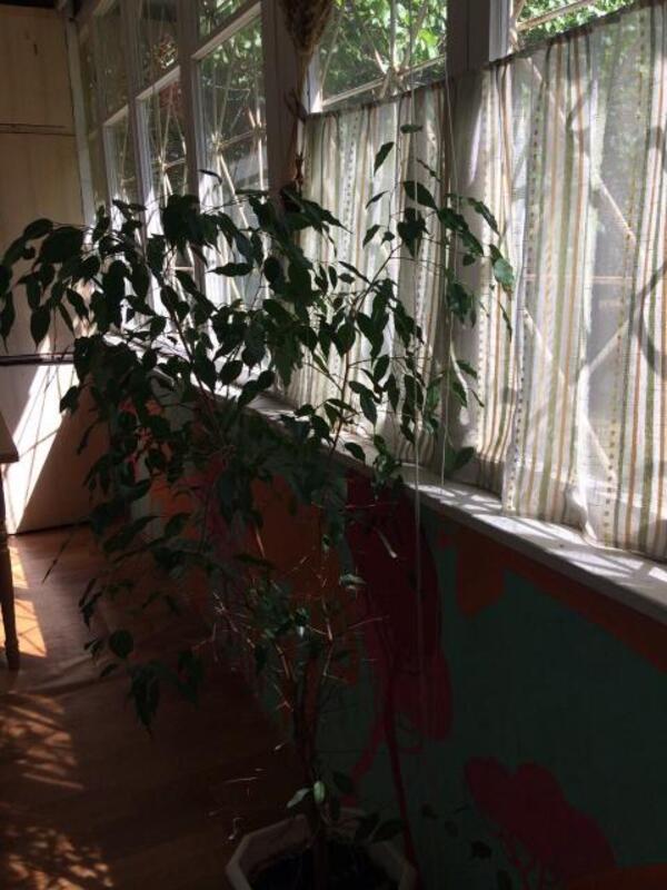 1 комнатная квартира, Харьков, Восточный, Ивана Каркача бул. (467213 5)