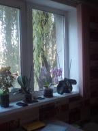 2 комнатная квартира, Мерефа, Сумская, Харьковская область (484325 5)