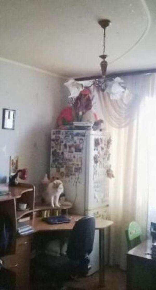 3 комнатная квартира, Харьков, Жуковского поселок, Академика Проскуры (496177 5)
