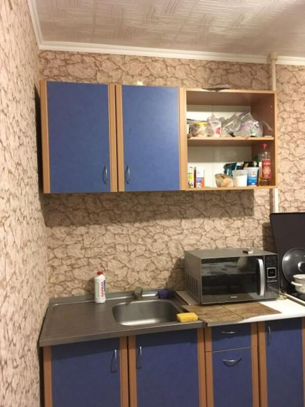 1 комнатная квартира, Солоницевка, Пушкина, Харьковская область (499687 6)