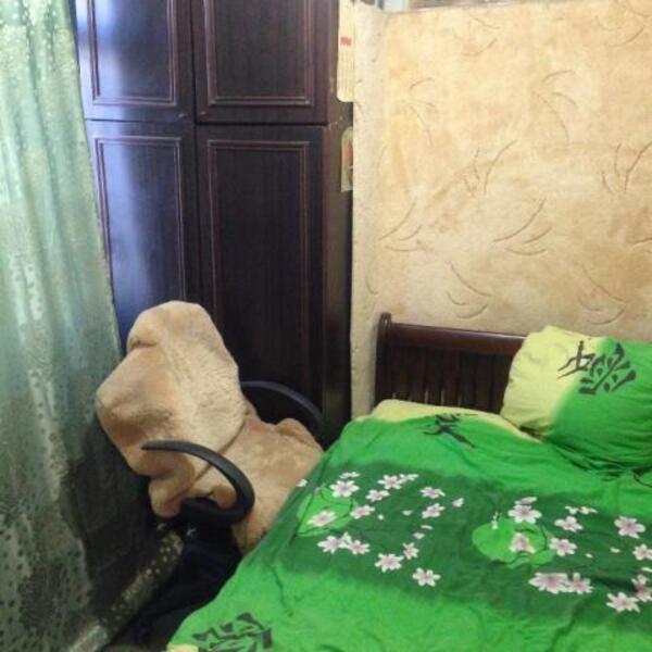 2 комнатная квартира, Харьков, Салтовка, Бучмы (Командарма Уборевича) (504438 5)