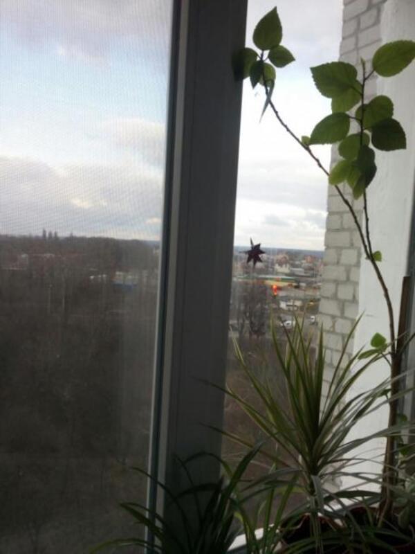 3 комнатная квартира, Харьков, Рогань жилмассив, Зубарева (507399 4)