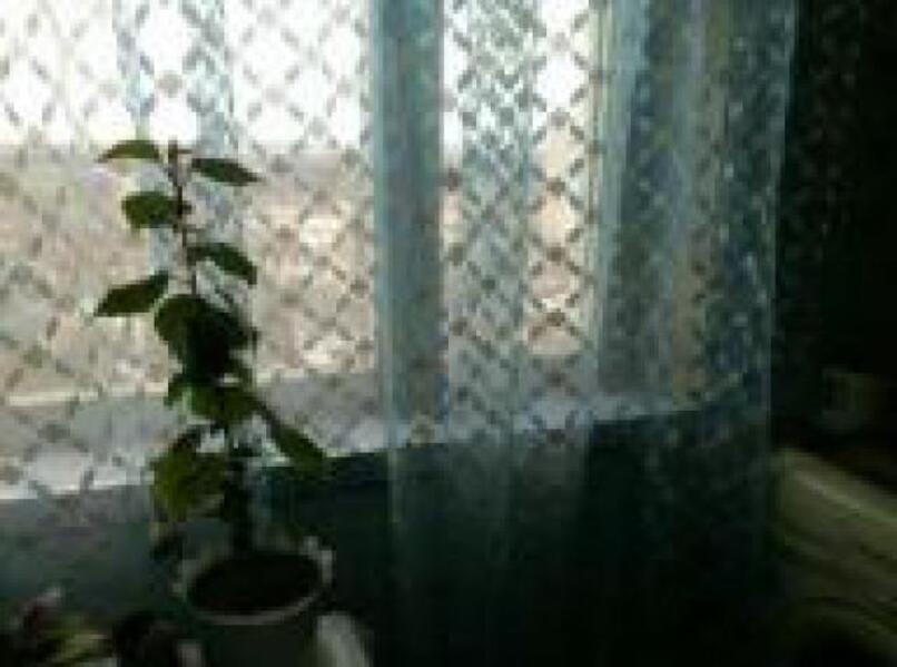 3 комнатная квартира, Харьков, Жуковского поселок, Астрономическая (514380 6)