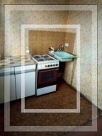 1 комнатная квартира, Песочин, Кушнарева, Харьковская область (538065 5)