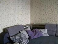 2 комнатная квартира, Харьков, Салтовка, Тракторостроителей просп. (539469 1)