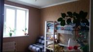 2-комнатная квартира, Харьков, Залютино, Борзенко