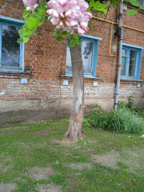 Купить 3-комнатная квартира, Липцы, Селянская (Совхозная, Пионера), Харьковская область