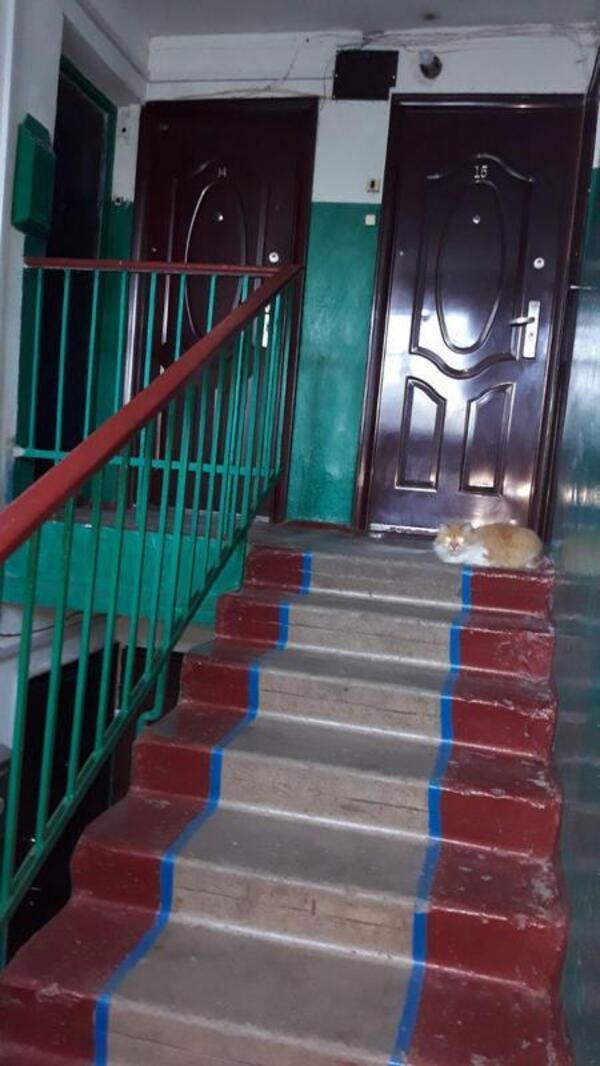 Купить 2-комнатная квартира, Тарановка, Харьковская область
