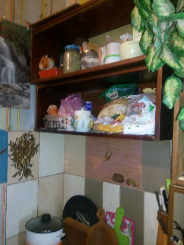 Купить 1-комнатная гостинка, Харьков, ХТЗ, Библика (2-й Пятилетки)