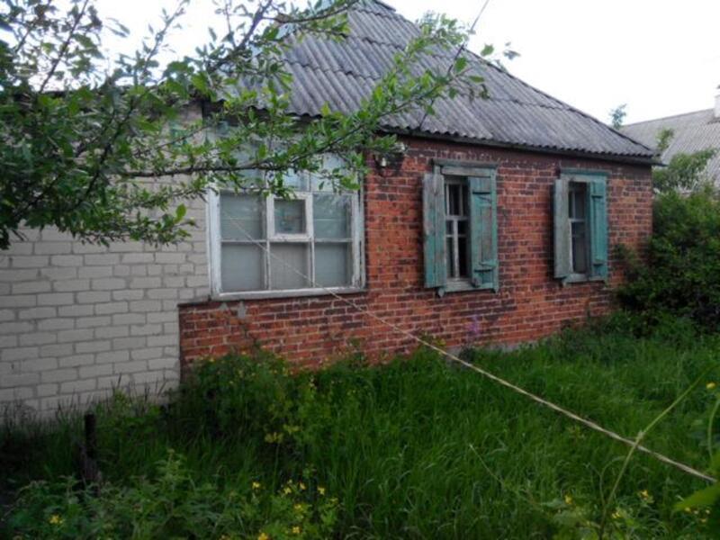 Дом, Борщевая, Харьковская область (176692 3)