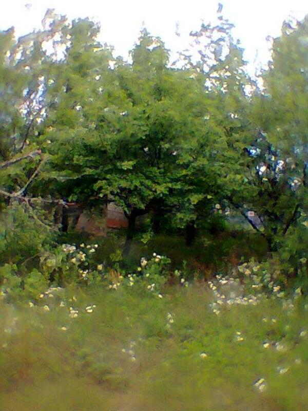 Дом, Малые Проходы, Харьковская область (227321 2)