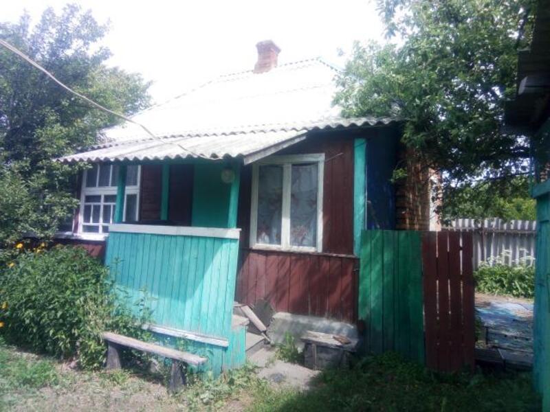 Дом, Высокий, Харьковская область (235588 2)