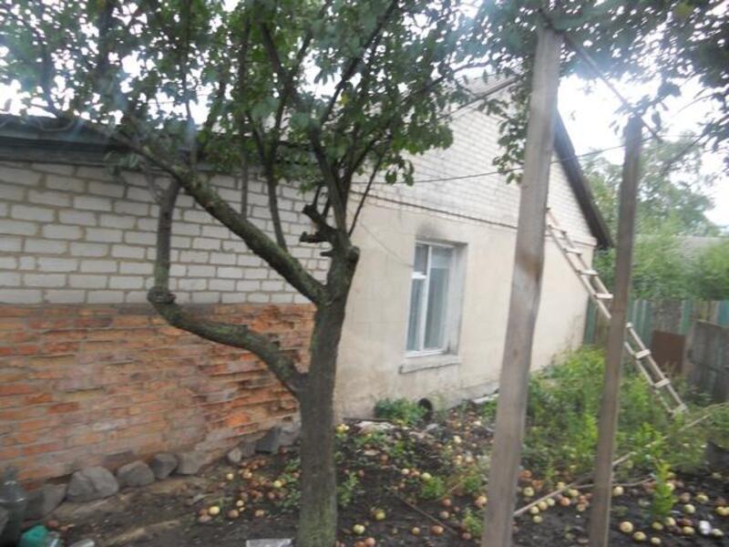 Дом, Дергачи, Харьковская область (241364 2)