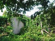 Дом, Глубокое, Харьковская область