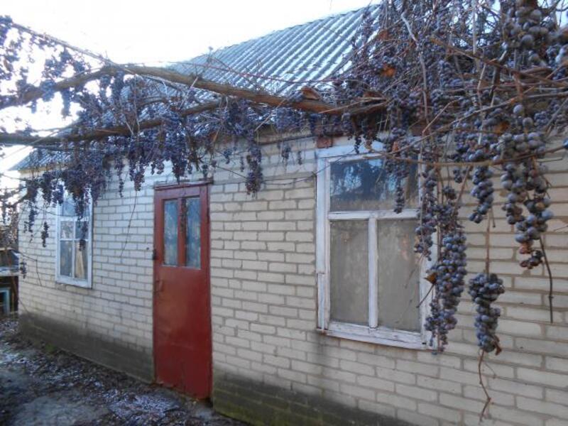 Дом, Малая Даниловка, Харьковская область (259561 1)