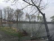 Дом, Мерефа, Харьковская область (270876 1)