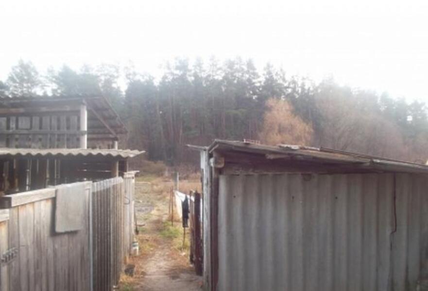 Дом, Безлюдовка, Харьковская область (311615 2)