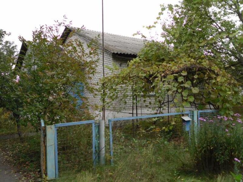 дом, Революционное, Харьковская область (314885 4)