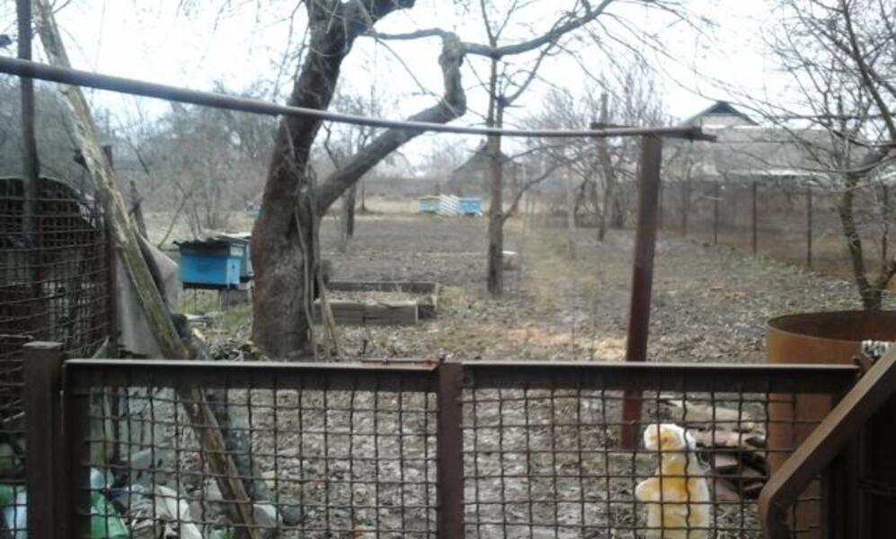 Дом, Покотиловка, Харьковская область (342747 4)