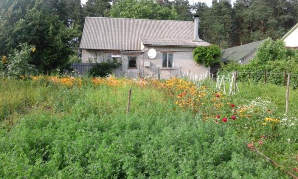 Дом, Мерефа, Харьковская область (349803 2)
