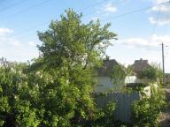 Дом, Казачья Лопань, Харьковская область (351571 8)