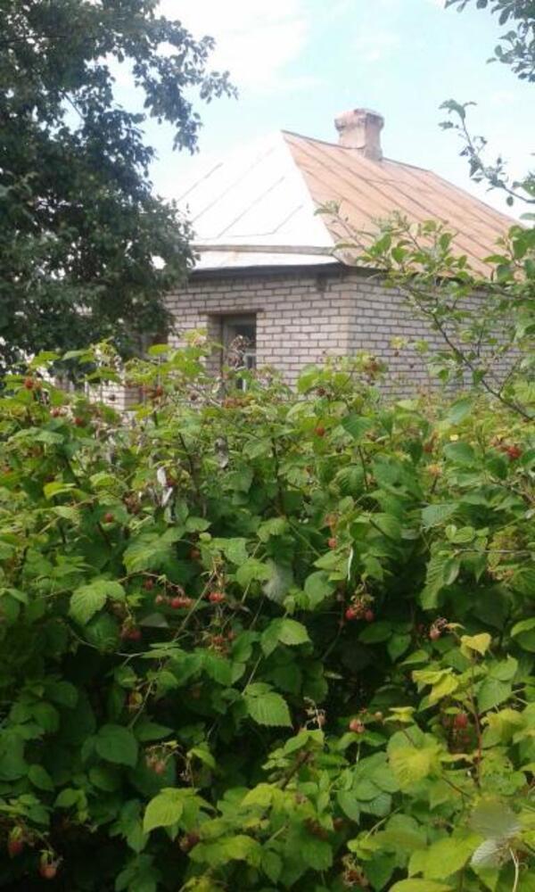 Дом, Казачья Лопань, Харьковская область (357414 1)