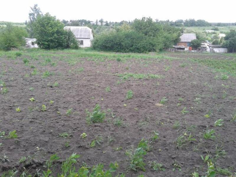 Дом, Золочев, Харьковская область (363205 10)