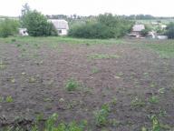 Дом, Солоницевка, Харьковская область (363205 10)