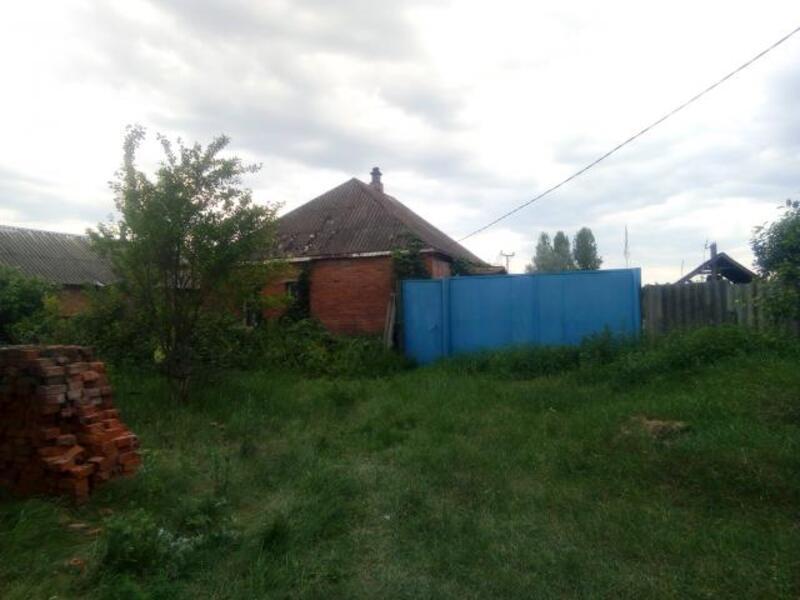 Дом, Люботин, Харьковская область (364372 5)