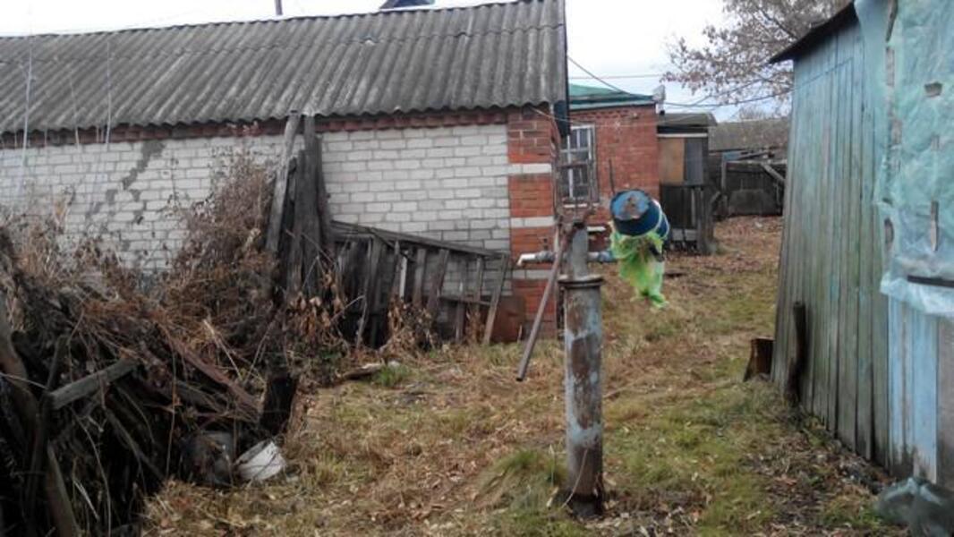 Дом, Высокий, Харьковская область (366949 1)