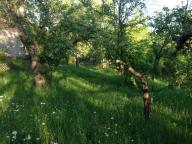 , Высокий, Харьковская область