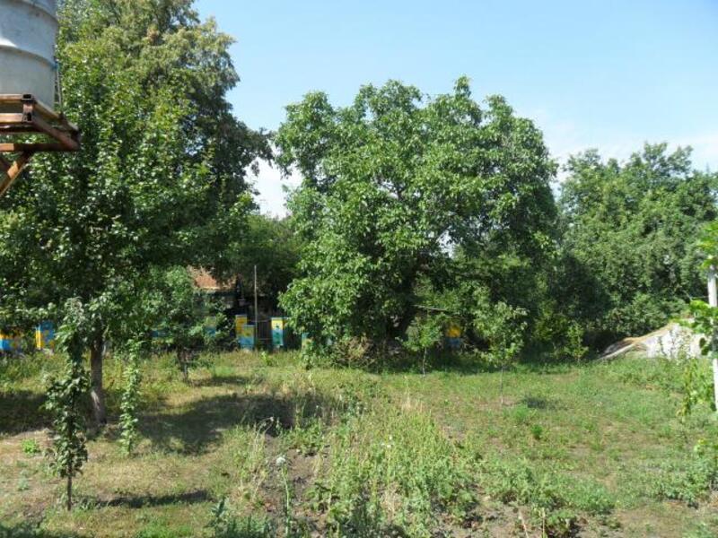 Дом, Палатки, Харьковская область (373604 5)