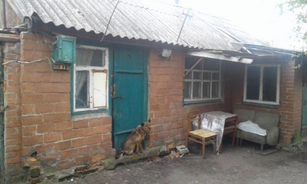 дом, Феськи, Харьковская область (380473 4)