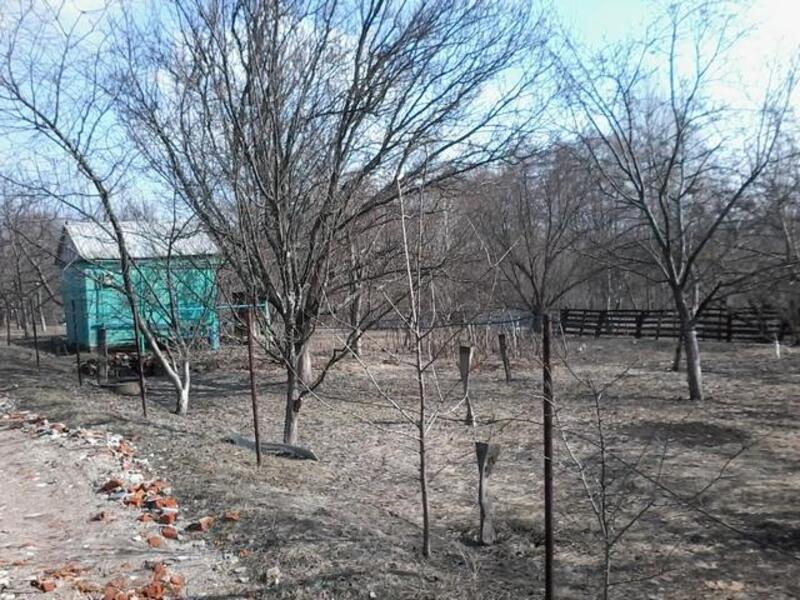 дом, Зидьки, Харьковская область (385201 1)