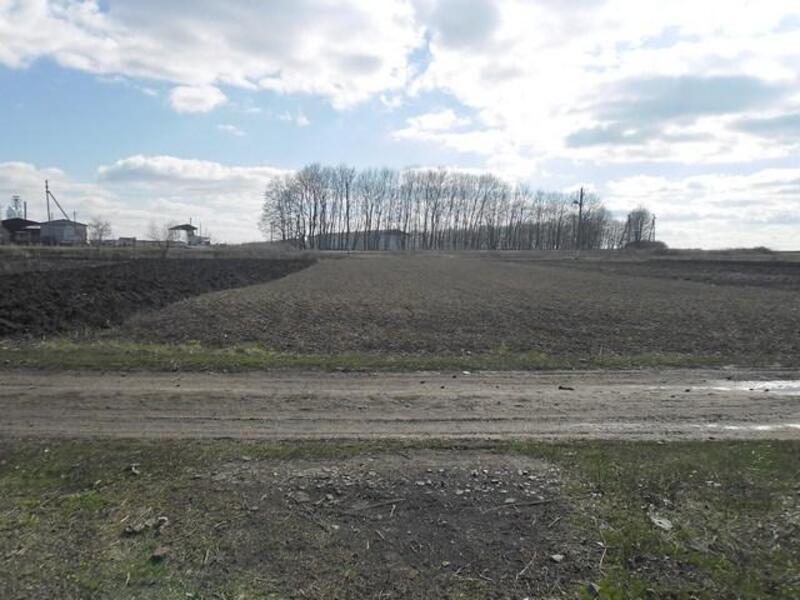 дом, Новопокровка, Харьковская область (386338 5)