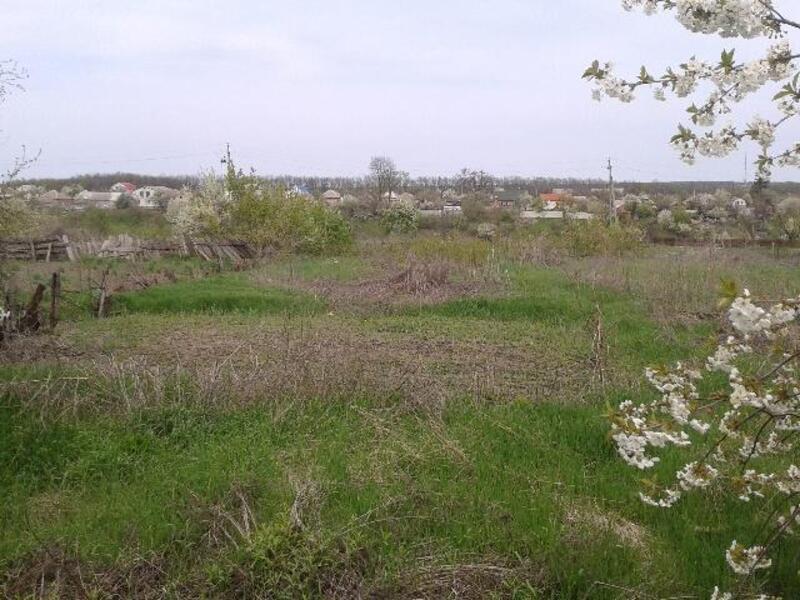 Дом, Введенка, Харьковская область (392611 5)