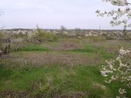 Дом, Малиновка, Харьковская область (392611 5)