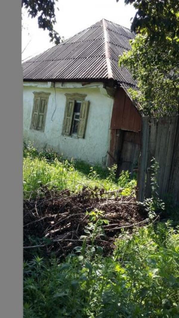 Дом, Шелкоплясы, Харьковская область (393435 4)