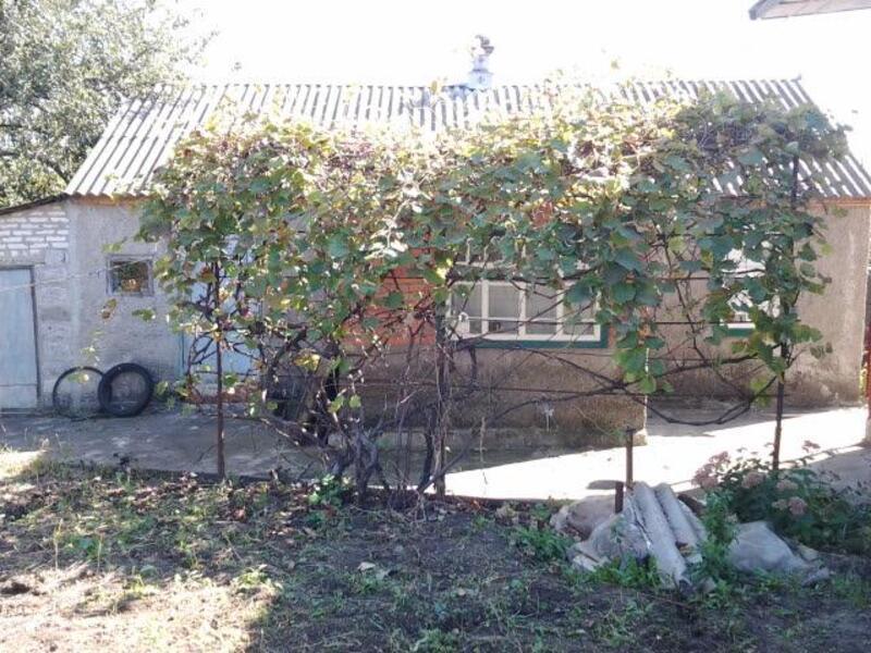 Дом, Терновая, Харьковская область (403898 19)