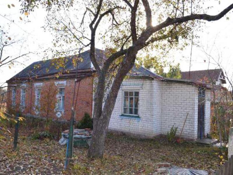 Дом, Борщевая, Харьковская область (406327 1)