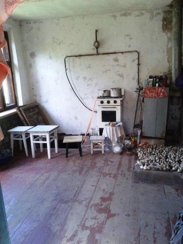 Дом, Хорошево, Харьковская область (411346 8)