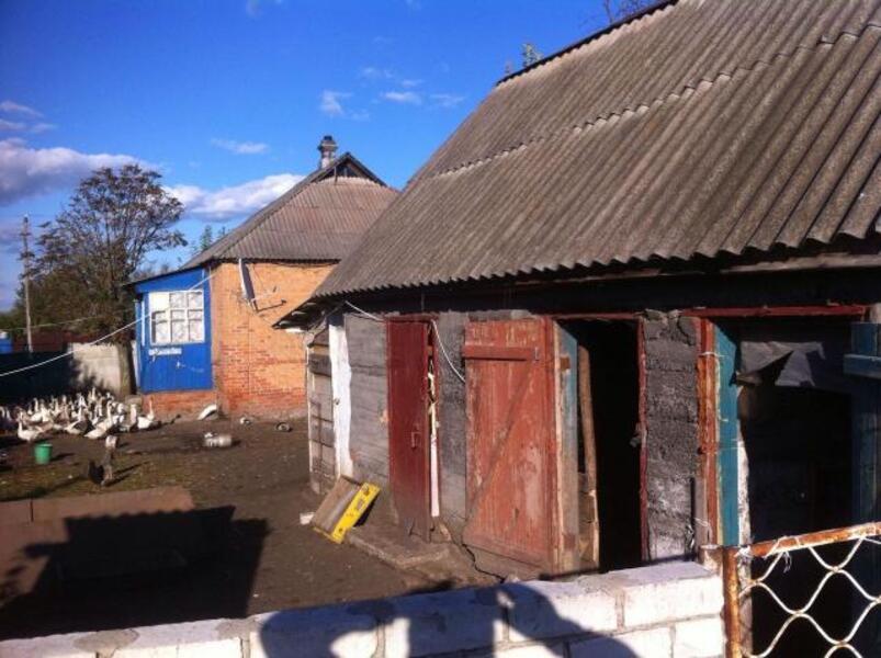дом, Печенеги, Харьковская область (415686 5)