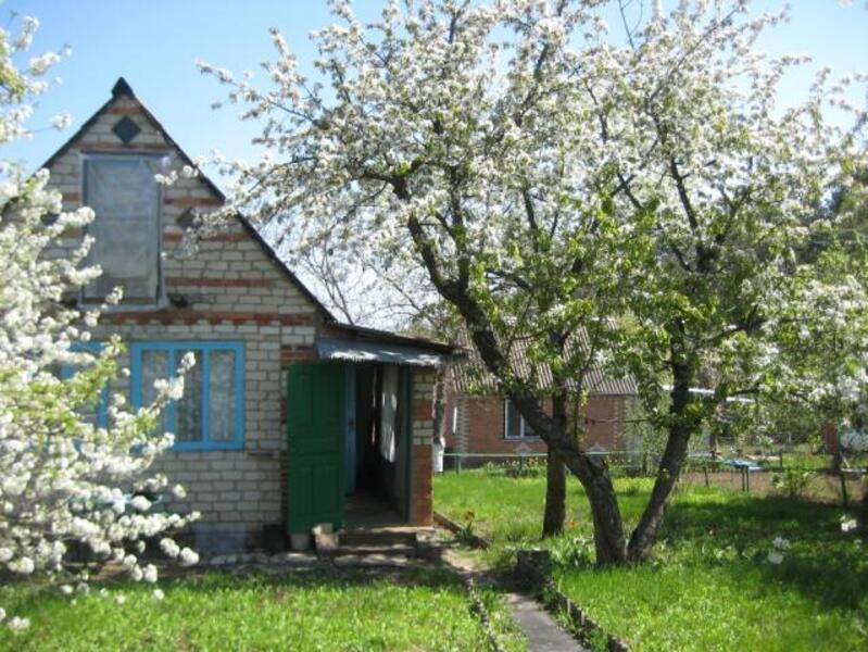 Дом, Казачья Лопань, Харьковская область (420964 1)