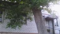 Дом, Мерефа, Харьковская область (428618 4)