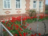 Дом, Люботин, Харьковская область (431695 2)