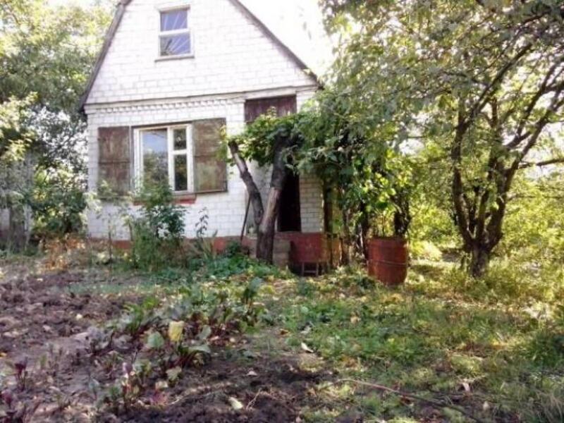 Дом, Ольшаны, Харьковская область (435117 2)
