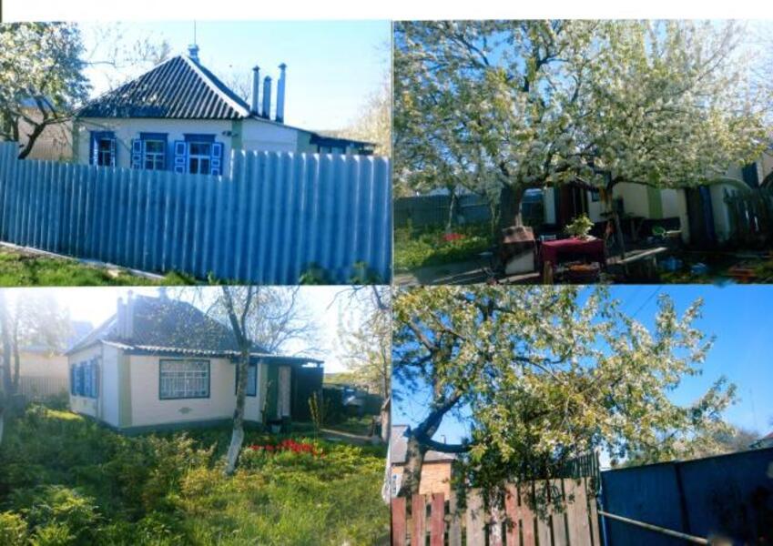 Дом, Коробочкино, Харьковская область (436258 1)